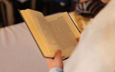 Studying Jewish texts (Photo by Eran Menashri on Unsplash)