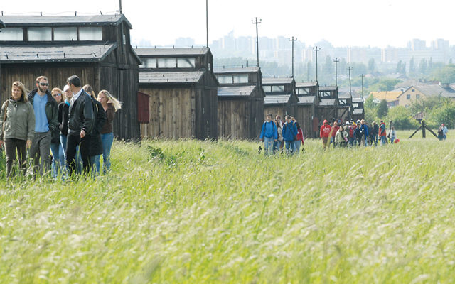 Students in the March of the Living walk from Auschwitz to Birkenau on Holocaust Remembrance Day.