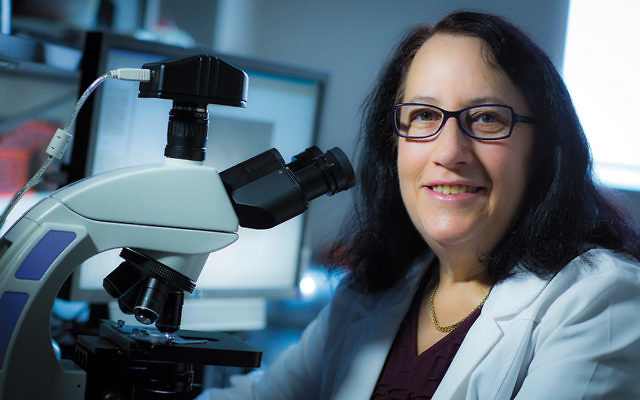 Dr. Miriam  Z. Wahrman will be honored at this year's graduation for her diverse work at William Paterson University.