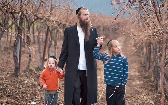 Israeli farmer Ira Zimerman and his children are in his vineyard. He harvests grapes to serve a large local winery. (The Smith Fund)
