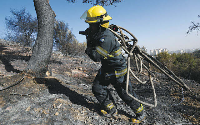 An Israeli firefighter treks through a forest burned by a massive blaze in Haifa. (Gili Yaari /Flash90)