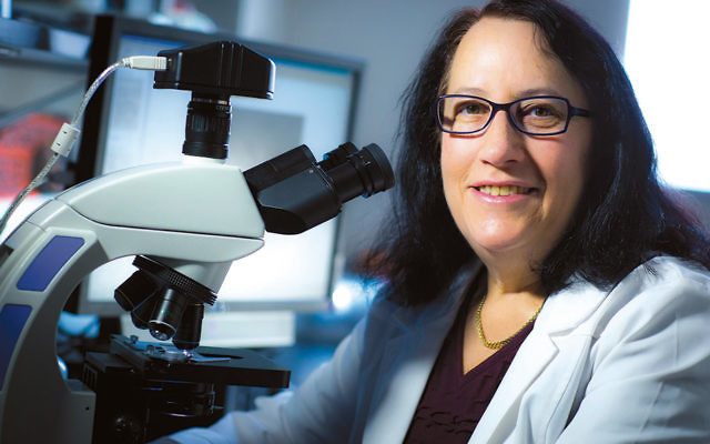 Dr. Wahrman's world changed as science and Judaism and newsprint came together for her — right here.