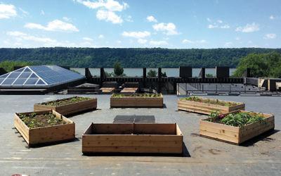 The rooftop garden honoring Ilan Tokayer at SAR Academy.