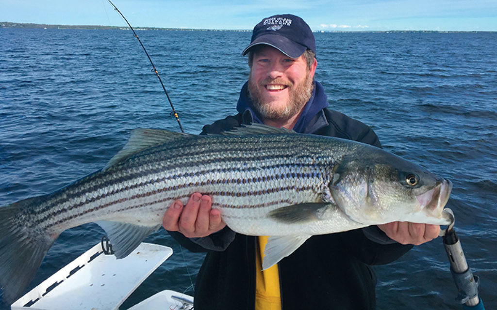 Jeff Ingber holds a freshly caught Narragansett Bay striped bass.
