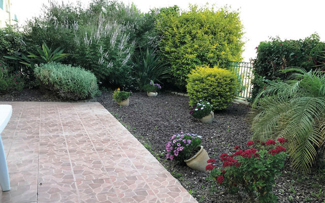 The Leichmans' tile patio is fringed with bushes, flowers, and shrubs.