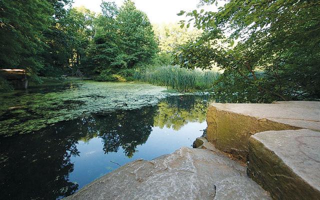 Flat Rock Brook (Courtesy Sierra Club)