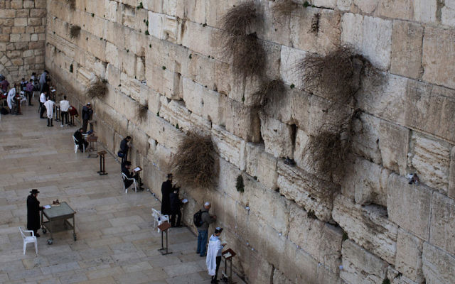 Men praying at the Western Wall in the Old City of Jerusalem, Jan. 17, 2017. (Chris McGrath/Getty Images