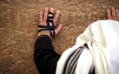 A charedi man prays at the Western Wall earlier this year. (Yossi Zamir/Flash90)
