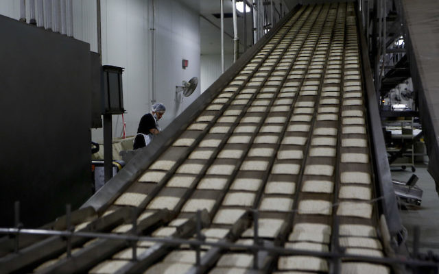 Hot matzah traveling down a cooling belt at the Manischewitz facility in Newark, Feb, 4, 2014. (Jeff Zelevansky/Getty Images)