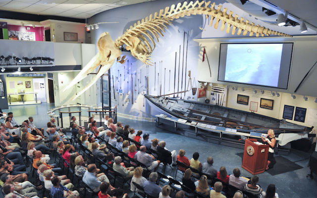 This skeleton of a 46-foot sperm whale hangs at the Whaling Museum in Nantucket, a resort island that was once a hub of the whaling industry. (Courtesy of the Nantucket Historical Association).
