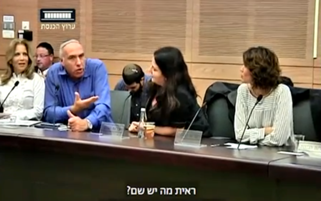 Lawmakers argue during a meeting of the Immigration, Absorption and Diaspora Affairs Committee on November 1, 2017. (Screen capture/Knesset Channel)