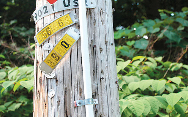 A PVC pipe attached to a telephone pole in Upper Saddle River, helps form the eruv. (Ben Sales)