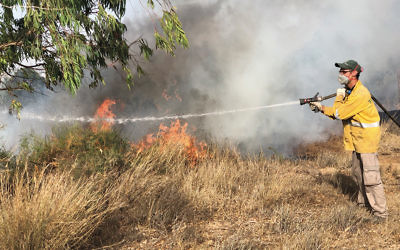 A firefighter extinguishes a blaze in the Beeri Forest on the Israeli border with Gaza on June 11, 2018. (Sam Sokol)