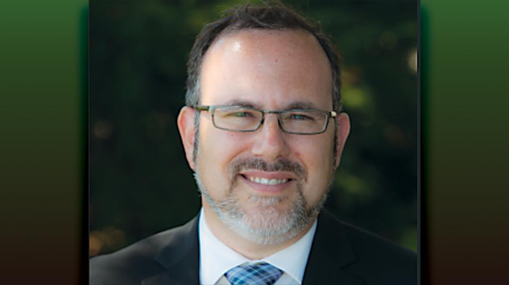 Rabbi David Fine