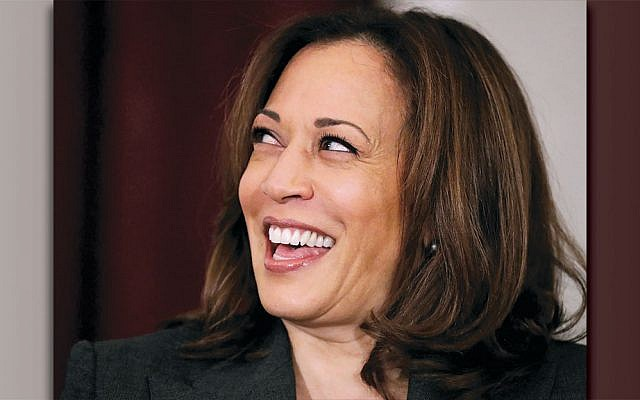 Sen. Kamala Harris in the Russell Senate Office Building on Capitol Hill November 13, 2018. (Chip Somodevilla/Getty Images)