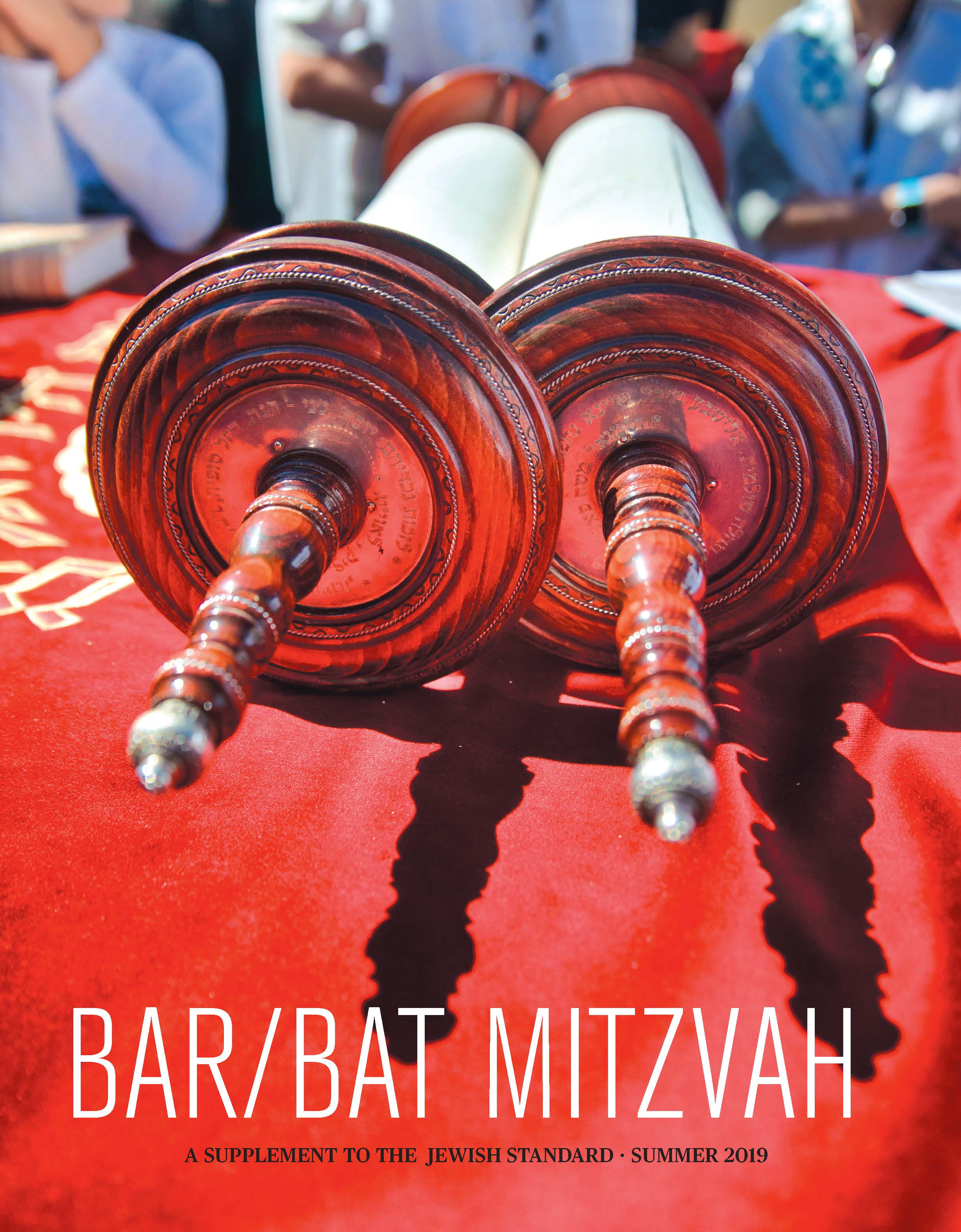 Bar/Bat Mitzvah, Summer 2019