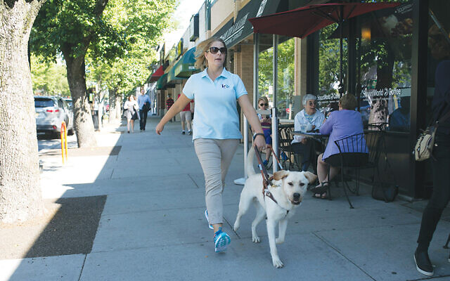 A new pair — person and dog — walk around town together.