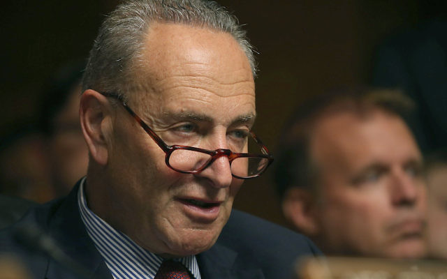 Sen. Charles Schumer participating in a Senate Judiciary Committee hearing on Capitol Hill, July 8, 2015. (Mark Wilson/Getty Images)