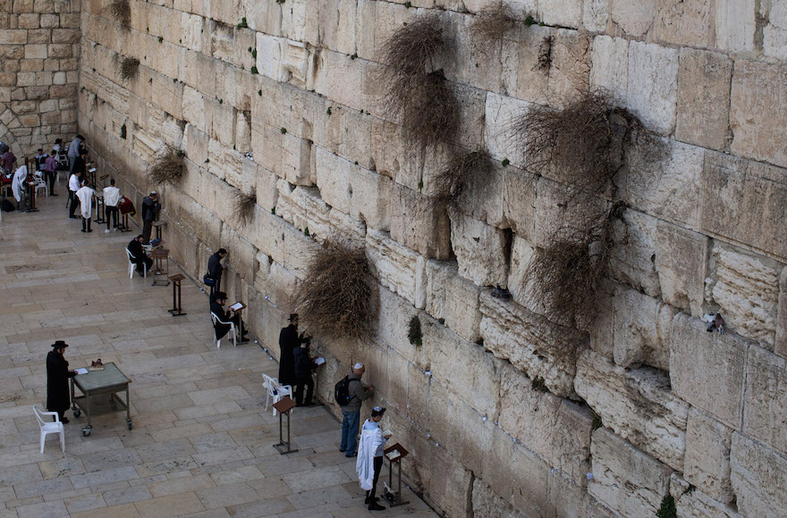 Israel Says It Will Ex...