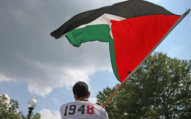 A man waving a Palestinian flag in front of the Israeli Embassy in Washington, D.C., July 11, 2014. (Mark Wilson/Getty Images)