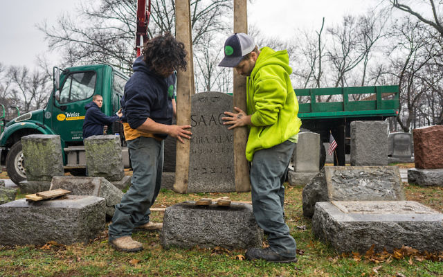 Workers placing headstones back on their bases at Chesed Shel Emeth Cemetery in the St. Louis area. JTA