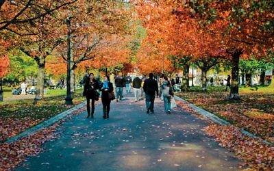 The Boston Commons in autumn. Wikimedia Commons
