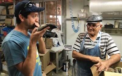 Dror Yoggev blowing a shofar while Shimon Keinan watches at his Kol Shofar factory in Givat Yoav, Golan Heights, Sept. 6, 2017. (Andrew Tobin)