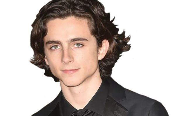 Call me Timothee: Young actor Timothee Chalamet is  up for best actor this year.