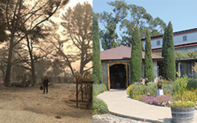 Hagafen Winery, left, during last summer's wildfire. Its visitors center, right, is being expanded. JTA/Hagafen Winery