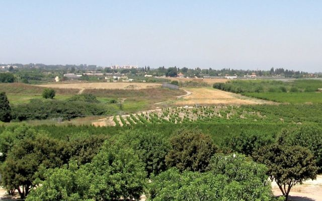 The countryside outside of Karkur. The northern Israeli town, like those of Binyamina and Zichron Yaakov, are now home to boutique hotels and forward-thinking chefs. Wikimedia Commons