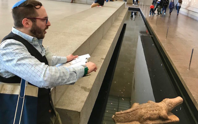 Nachliel Selavan giving a tour at the Metropolitan Museum of Art in New York, where a Roman-era crocodile sculpture is displayed in the moat near the Egyptian Temple of Dendur. (Debra Nussbaum Cohen)