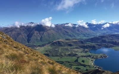 The South Island mountains. Photos courtesy of Yaël D. Cohen