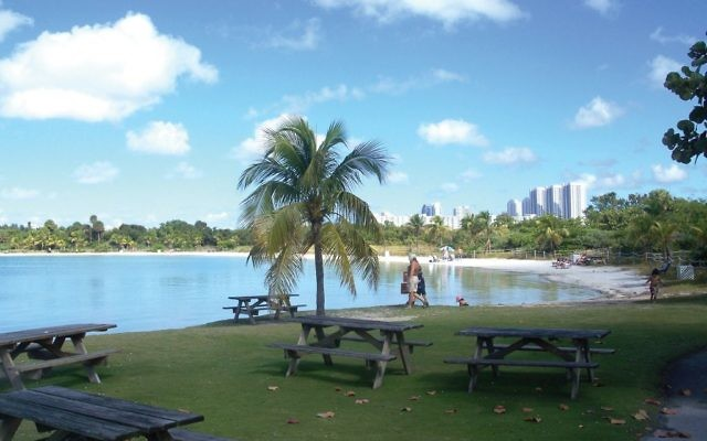 Hidden oasis: Oleta River State Park in North Miami. Wikimedia Commons