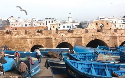 Under the African sun, blue, white and gold are the colors that define Essaouria's shoreline: white seagulls flying over brightly painted fishing boats in the turquoise harbor, canons lined up by sandy-hued fortifications.  Wikimedia Commons