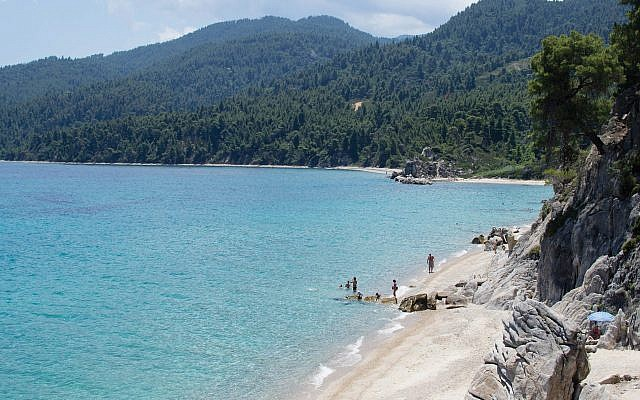 A stretch of mountain coastline and thick pine forest in Chalkidiki. Photo by Wikimedia Commons