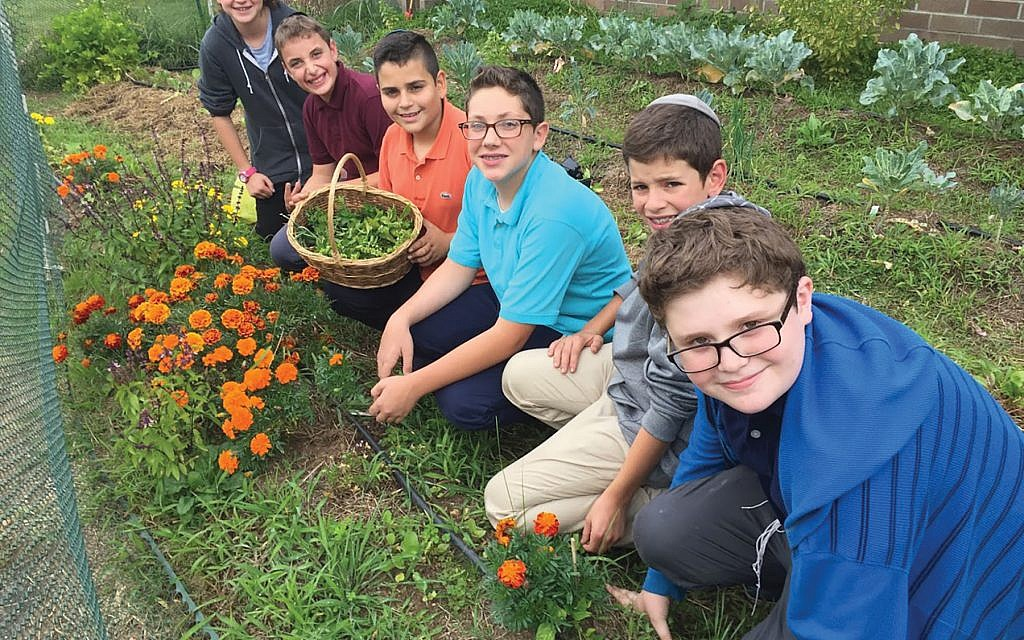 Tend your garden: SAR students are part of GrowTorah program, which teaches about ecology, personal growth and connection to God. Courtesy of GrowTorah