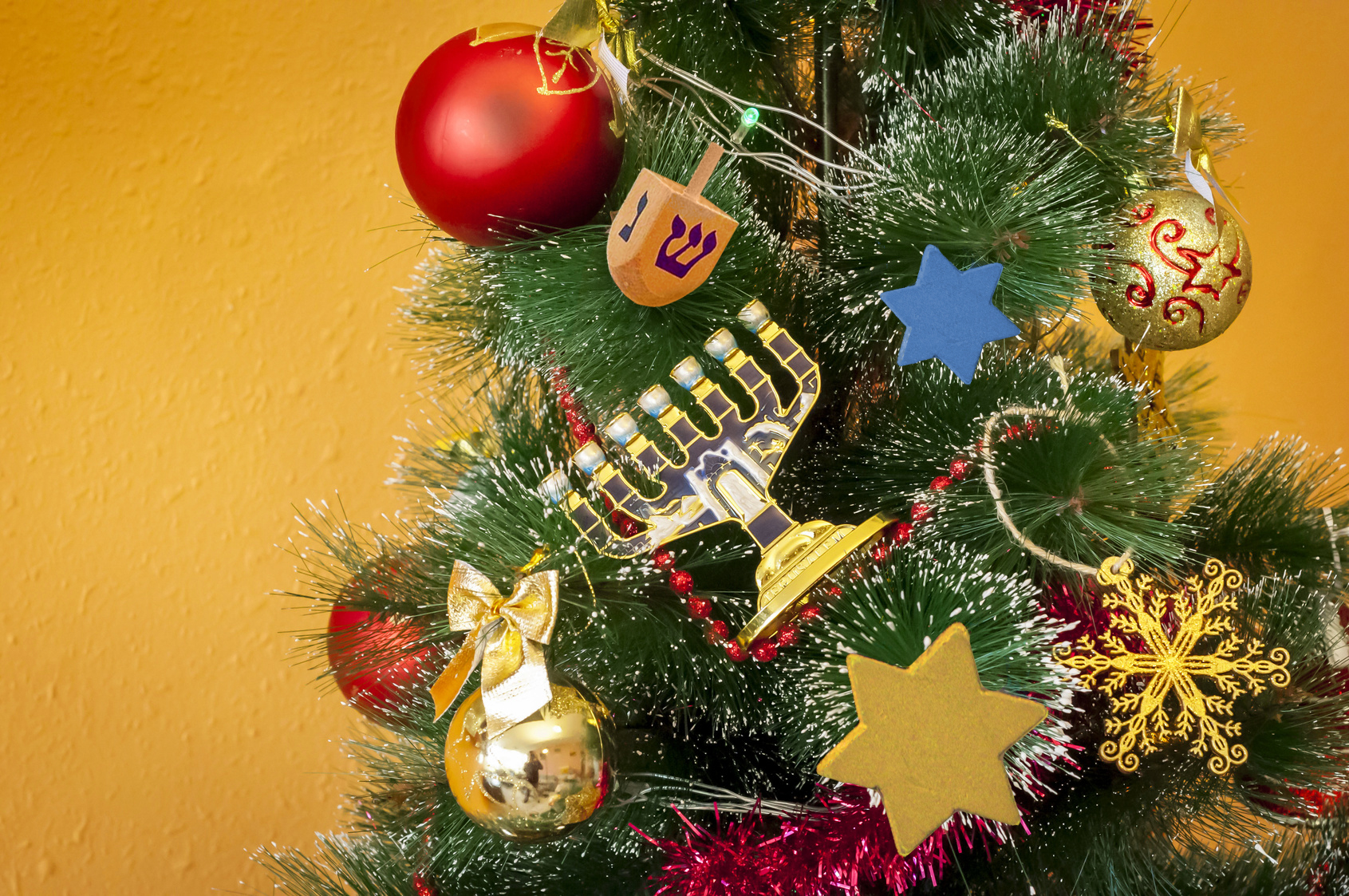 Jews Christmas Trees.Is It Kosher To Have A Chanukah Bush Jewish Week