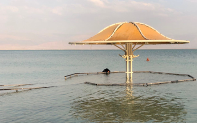 At the Dead Sea. Courtesy of Cheryl Katz