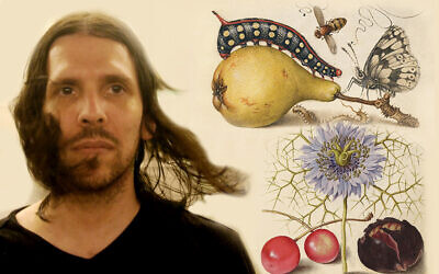 Author and musician Daniel Oz. JW Collage/Janice Hwang (Illustrations from book cover)