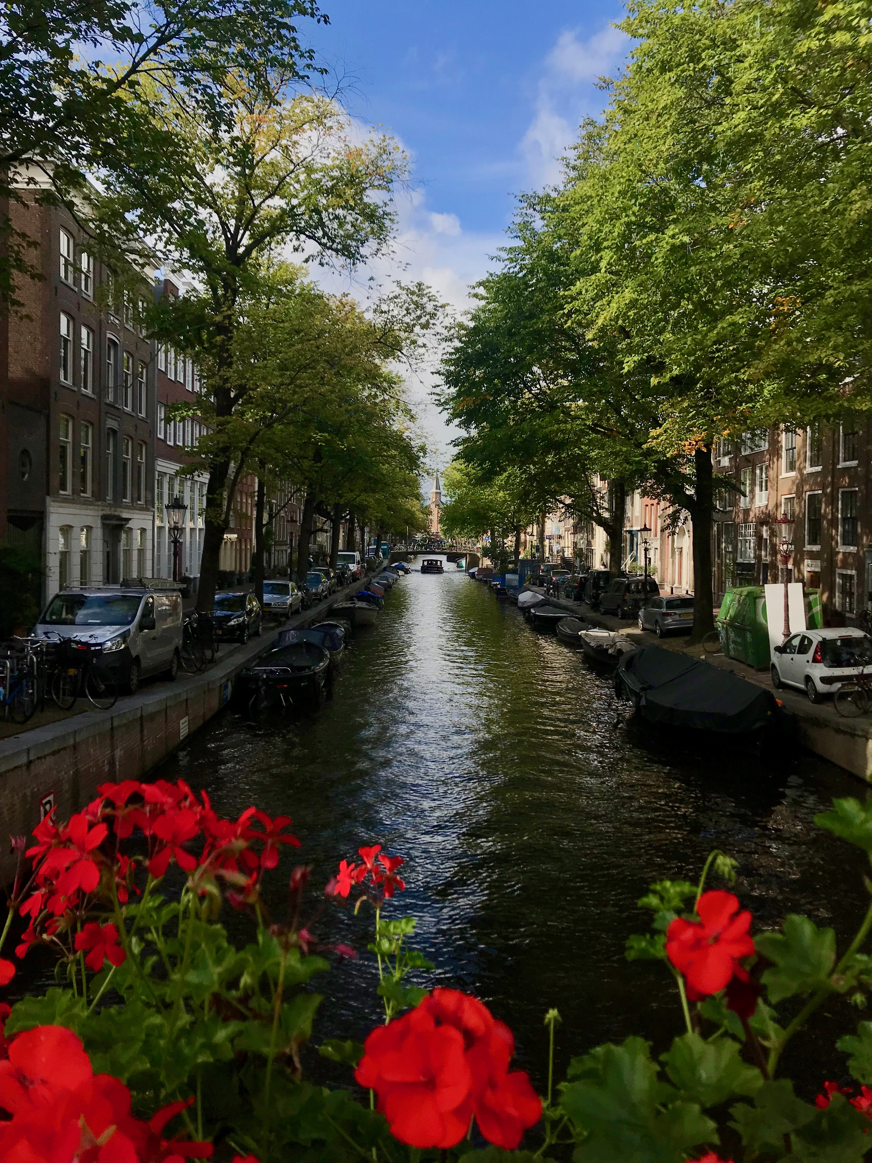 Amsterdam has 165 canals whose length stretches across approximately 31 miles.  Miriam Groner/JW