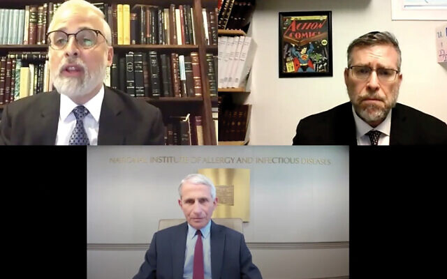 Rabbi Moshe Hauer, executive vice president of the Orthodox Union, top left, welcomes Dr. Anthony Fauci, director of the National Institute of Allergy and Infectious Diseases, to a webinar on May 7, 2020. Rabbi Daniel Korobkin, president of the Rabbinical Council of America, right, offered a blessing on behalf of his colleagues.