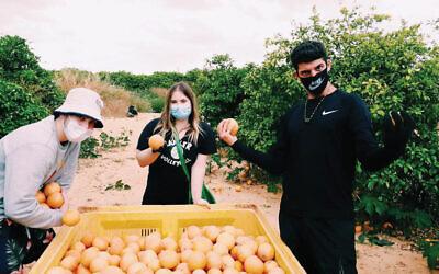 Noa Niv of Livingston, N.J., center, participated in a recent Aardvark Israel program. Photo courtesy Aardvark Israel