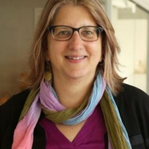 Alexandra Minna Stern is Carroll Smith-Rosenberg Collegiate Professor of History, American Culture and Women's and Gender Studies as well as the Associate Dean for the Humanities (Office of the LSA Dean) at the University of Michigan.