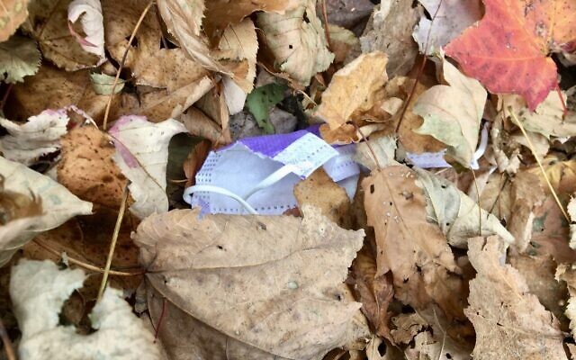 Autumn in New York: Falling leaves, discarded masks. (Jewish Week)