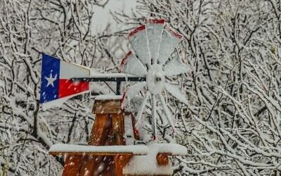Ice storms in February took down the power grid in Texas and led to wide scale outages. (Diann Bayes/Flickr Commons)
