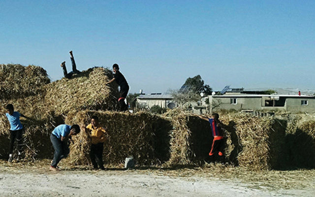"""Children play on bales of hay in an """"unrecognized"""" Bedouin village, which doesn't have proper playgrounds. Photos Courtesy"""