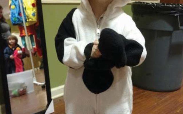 Four-year-old Ari Stern dressed in his new costume. Photos by Debra Rubin
