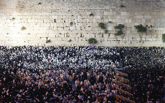 Thousands attend the blessing of the priests during the morning prayer on Shavuot at the Western Wall in Jerusalem's Old City on May 15, 2013.