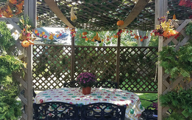 Rabbi Lenny Levin and Margie Freeman's sukkah in South Orange.