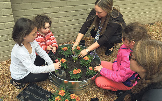 Students, teachers, and parents plant at the Thelma K Reisman Preschool garden at Congregation Beth El in South Orange.